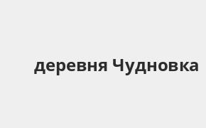 Справочная информация: Банкоматы Россельхозбанка в деревне Чудновка — часы работы и адреса терминалов на карте