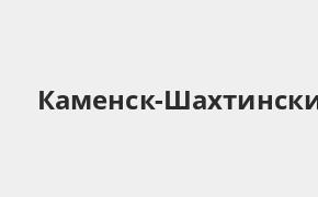 Справочная информация: Банкоматы Россельхозбанка в Каменск-Шахтинском — часы работы и адреса терминалов на карте
