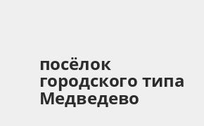 Справочная информация: Россельхозбанк в посёлке городского типа Медведево — адреса отделений и банкоматов, телефоны и режим работы офисов