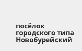 Справочная информация: Россельхозбанк в посёлке городского типа Новобурейский — адреса отделений и банкоматов, телефоны и режим работы офисов