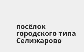 Справочная информация: Россельхозбанк в посёлке городского типа Селижарово — адреса отделений и банкоматов, телефоны и режим работы офисов