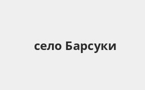 Справочная информация: Банкоматы Россельхозбанка в селе Барсуки — часы работы и адреса терминалов на карте