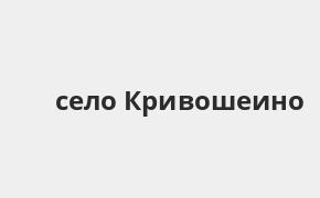 Справочная информация: Банкоматы Россельхозбанка в селе Кривошеино — часы работы и адреса терминалов на карте