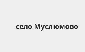 Справочная информация: Россельхозбанк в селе Муслюмово — адреса отделений и банкоматов, телефоны и режим работы офисов