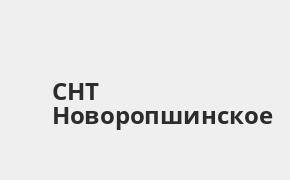 Справочная информация: Банкоматы Россельхозбанка в городe СНТ Новоропшинское — часы работы и адреса терминалов на карте