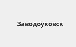 Справочная информация: Россельхозбанк в Заводоуковске — адреса отделений и банкоматов, телефоны и режим работы офисов